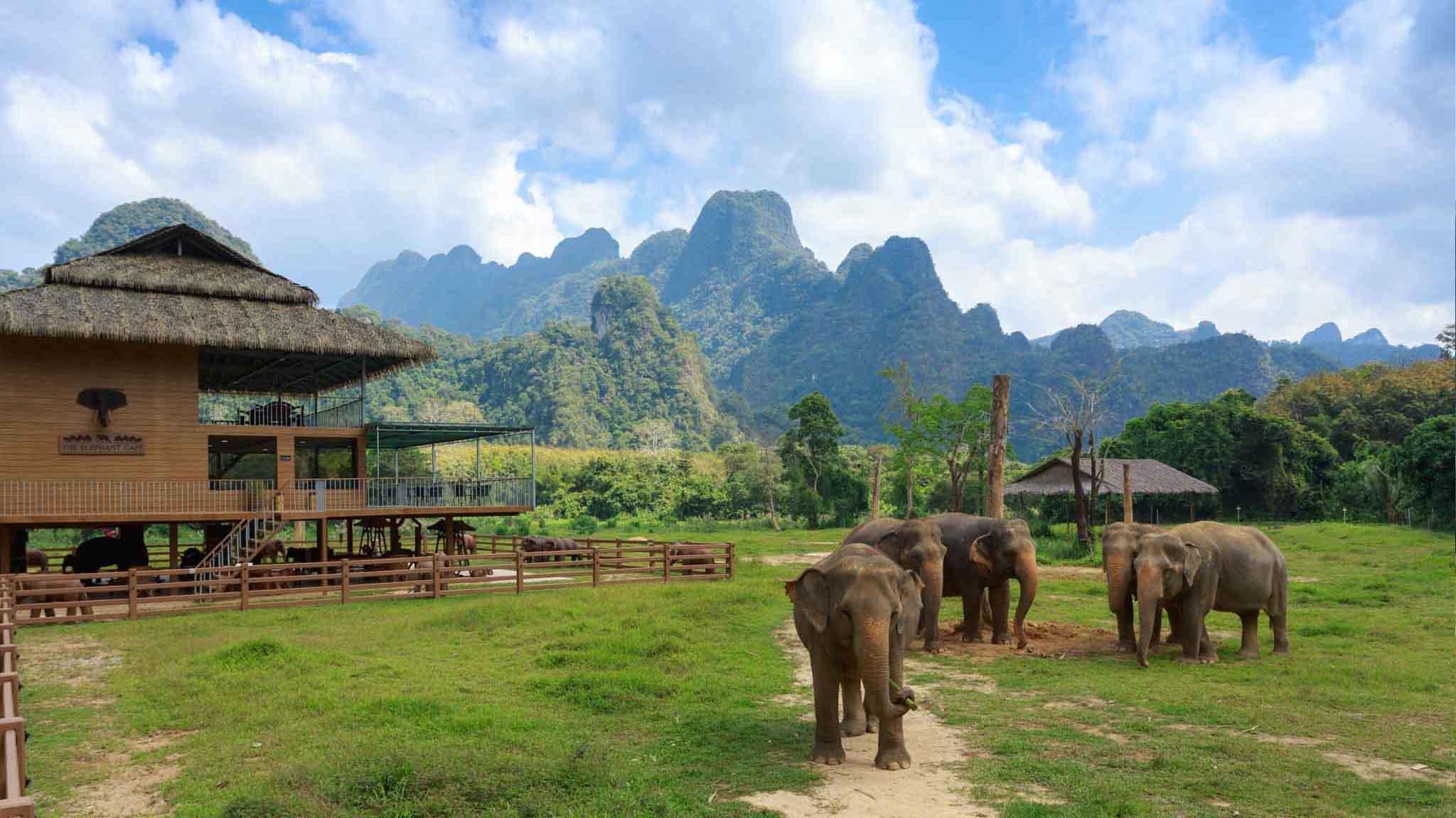 Elephant Hills3